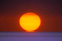 sun_fry
